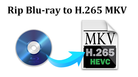 Top H.265 to H.264 Converter for PC