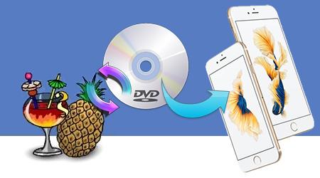 rip dvd with handbrake